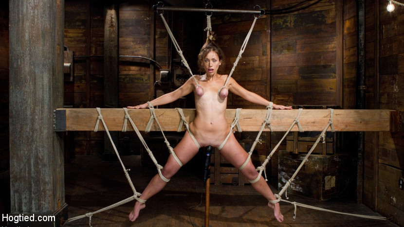 Free bdsm suspended by ass hook xxx pics