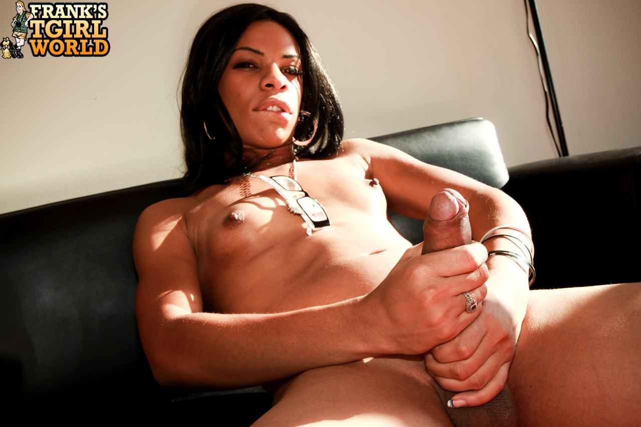 Download photo sasha strokes transsexual porn