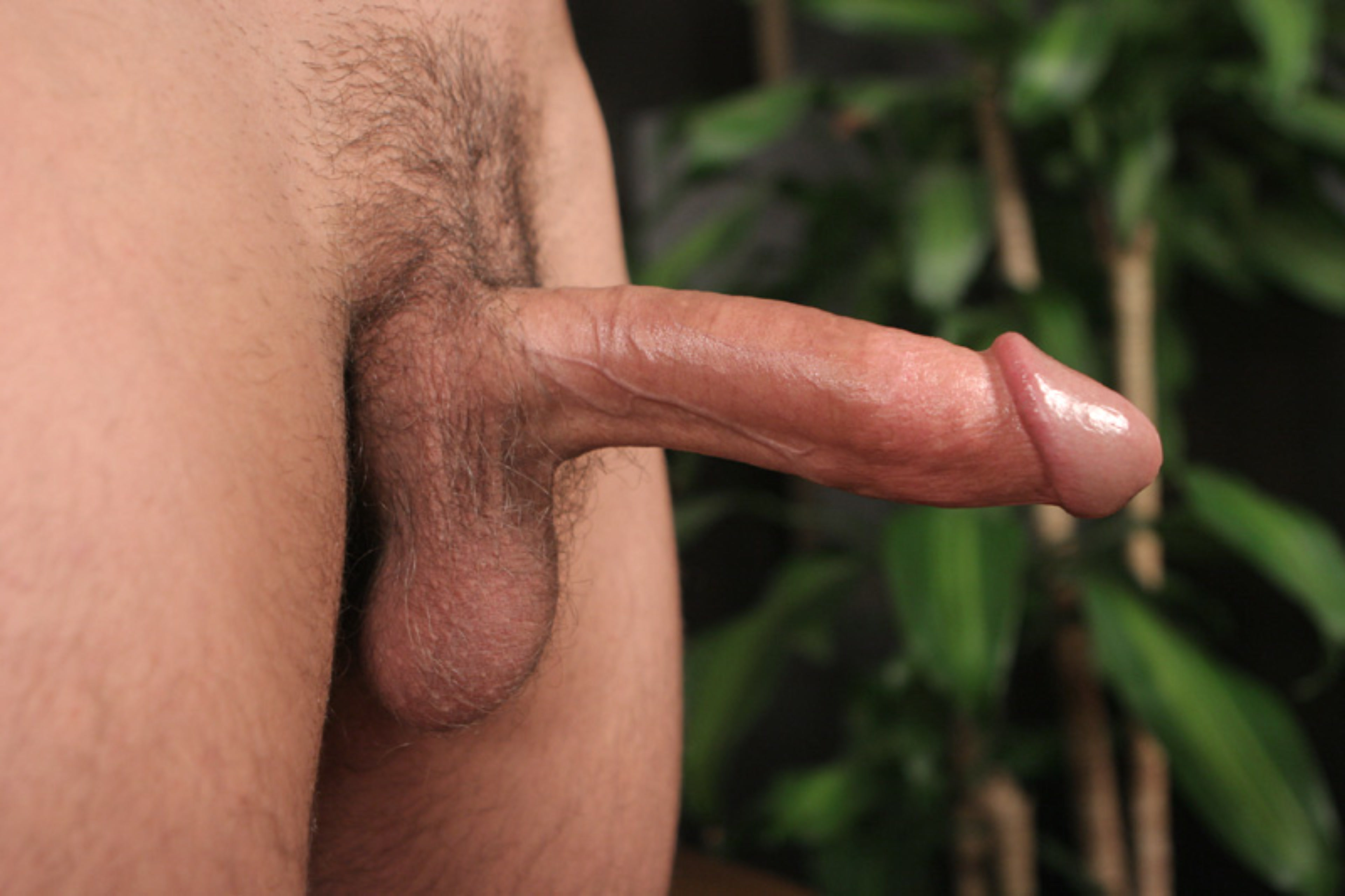 Closeup picture of a long hard dick